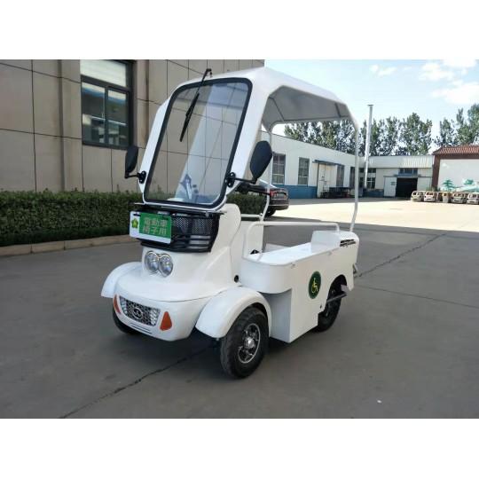 Electric Car White